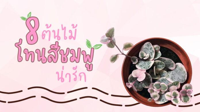 56-ต้นไม้โทนสีชมพู น่ารัก